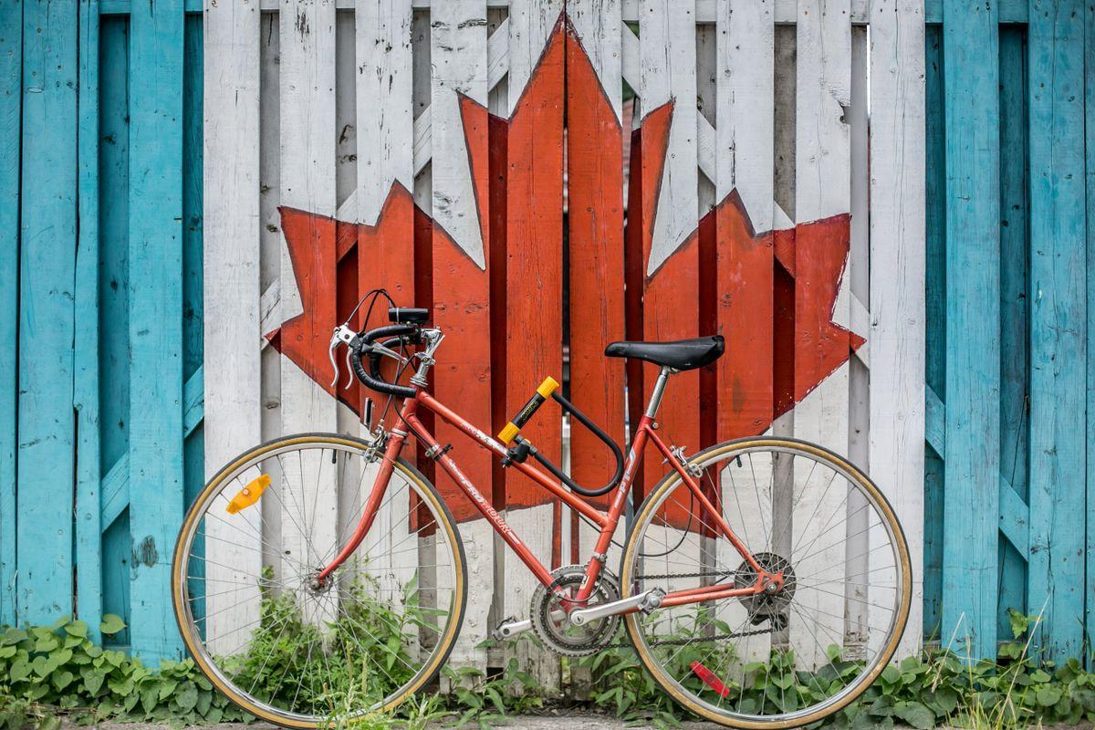 Canadian Maple Leaf 1200